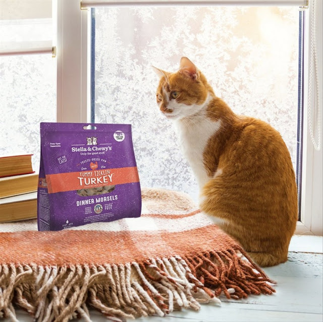 Stella Chewy s Turkey Dinner Freeze Dried Cat Food 8oz Disko