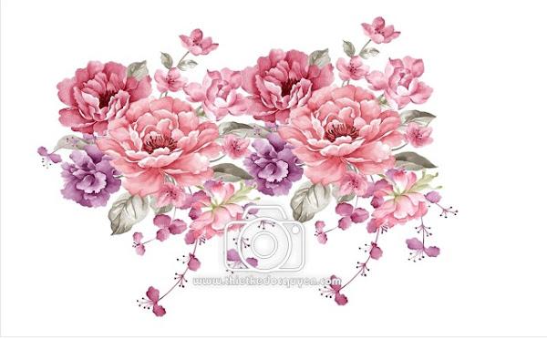 Vector chùm hoa đẹp