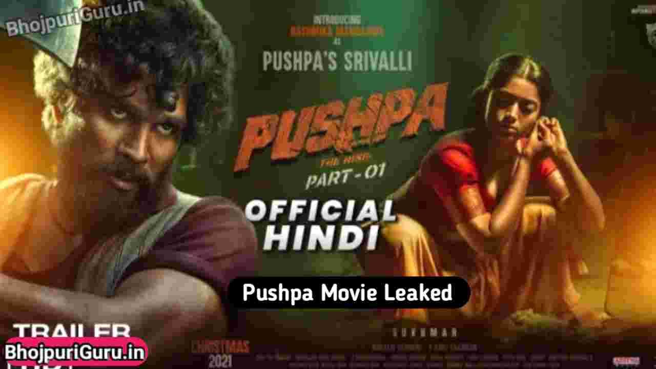 Pushpa Full Movie In Hindi Download Leader By Filmyhit, 9xmovies, Filmymeet - BhojpuriGuru.in