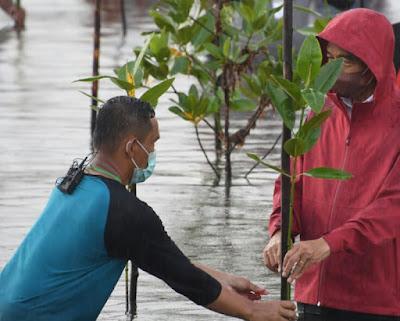 Tanam Mangrove di Batam, Ini Kata Presiden RI