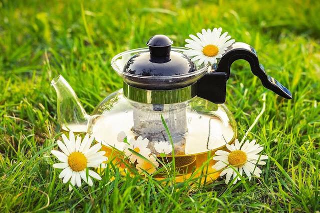 The Healing Health Benefits of Tea
