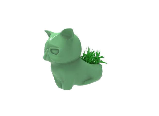 Cat tub