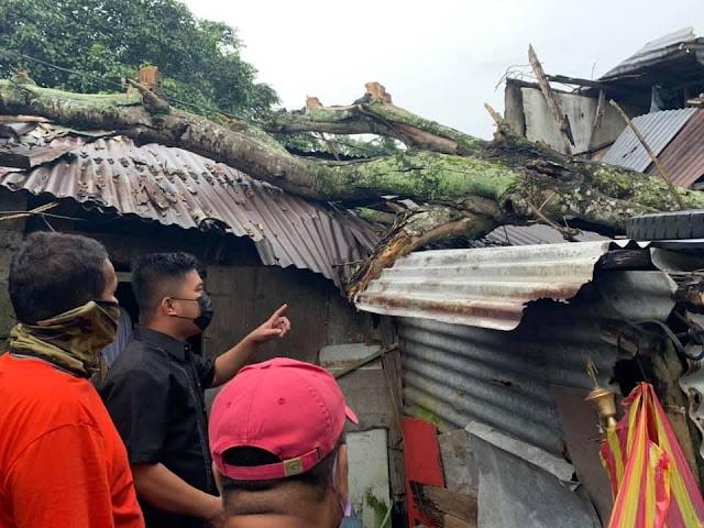 City Engineering Office inaksyunan ang bumagsak na puno sa kabahayan sa bahagi ng Barangay Ibabang Dupay