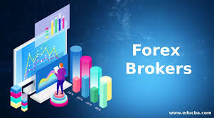 The Six Best Forex Brokers You Can Find In Nigeria