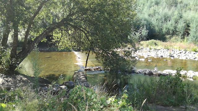 Praia Fluvial do cabril do Ceira