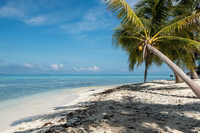 كيفية شراء عقارات بليز Buy Belize Real Estate