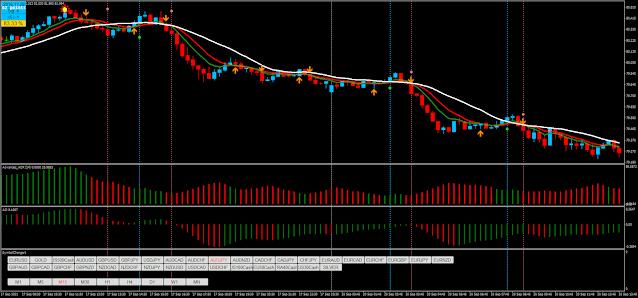 Palex Trading System