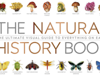 The Natural History Book: The Ultimate Visual Guide to Everything on Earth PDF