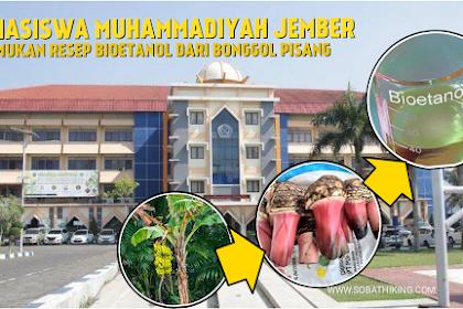 Mahasiswa Muhammadiyah Jember Temukan Resep Pemanfaatan Limbah Bonggol Pisang Sebagai Bioetanol