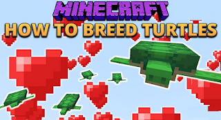 Breed turtles Minecraft, How to breed turtles in Minecraft