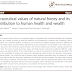 Valores nutracêuticos do mel natural e sua contribuição para a saúde e riqueza humana.