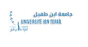 L'Université Ibn Tofail Kénitra UIT concours de recrutement de 30 postes
