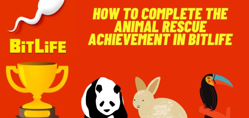 How do I complete the BitLife Animal Rescue Achievement? - Where to find animals to be rescued