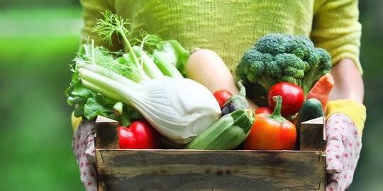Daerah Penghasil Sayuran
