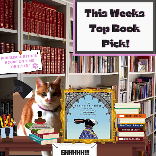 Ginger and white tabby cat sitting in a library, library cat