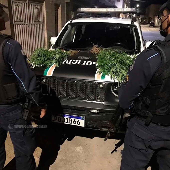 Após denuncia, homem é detido pela PM por cultivar plantação de maconha em Jati