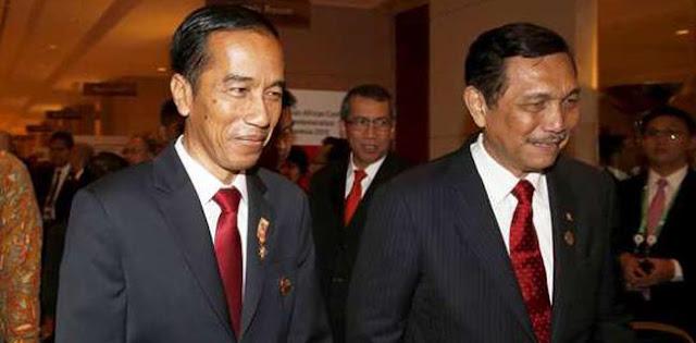 Jokowi Tidak Lihai Membangun Organsiasi, Apa-apa Luhut!