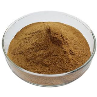 Mushroom extract powder supply in Mumbai