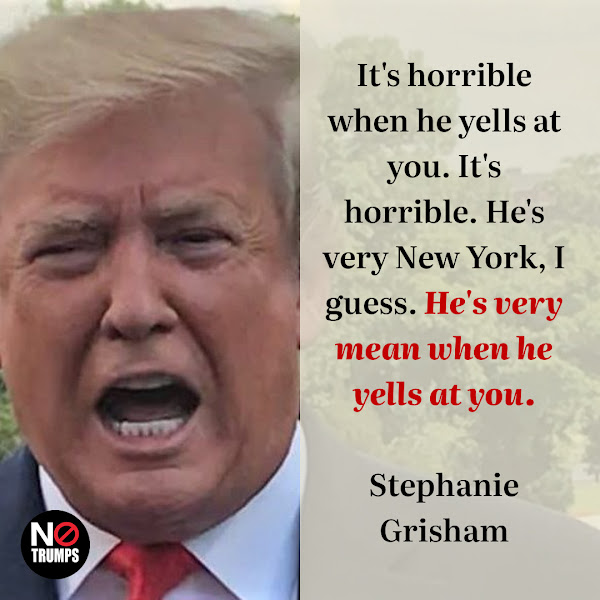 It's horrible when he yells at you. It's horrible. He's very New York, I guess. He's very mean when he yells at you. — Stephanie Grisham, a former White House press secretary and chief of staff to former first lady Melania Trump