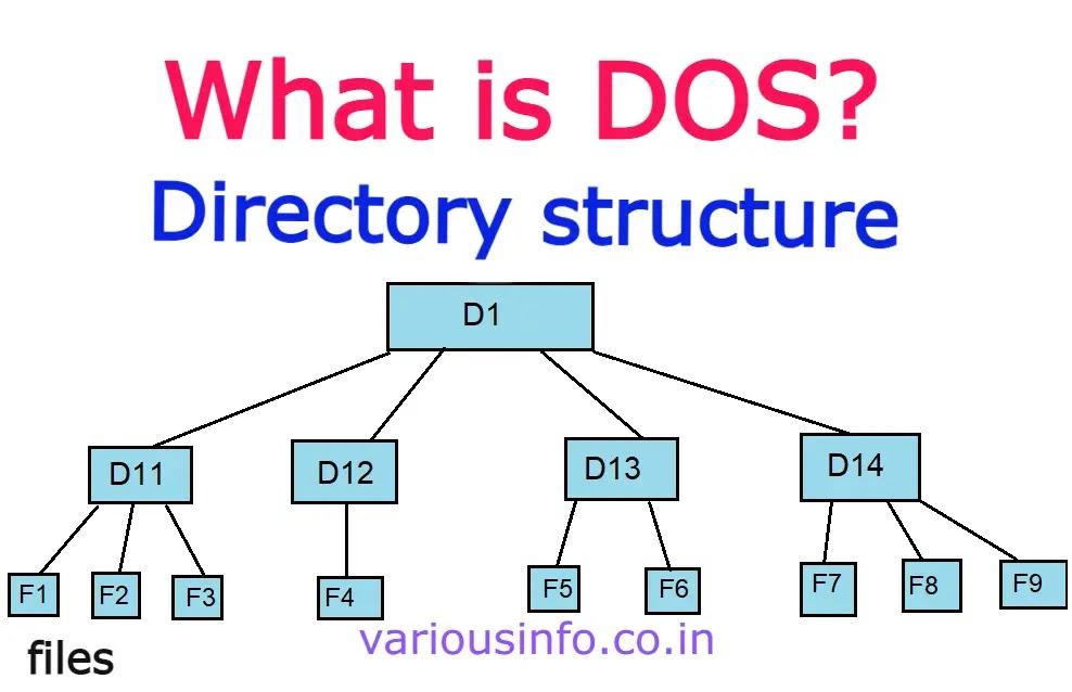 DOS क्या है इसमें File एवं directory structure को समझाइये.